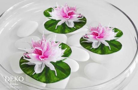 DIY Blüten und Seerosen aus Krepppapier Deko-Kitchen