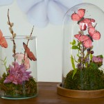 """DIY: Süßes """"Schmetterlings-Terrarium"""" als Tischdeko"""