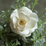 DIY romantische Rosenblüten aus Papier für Tischdeko oder Hochzeitsdeko Deko-Kitchen