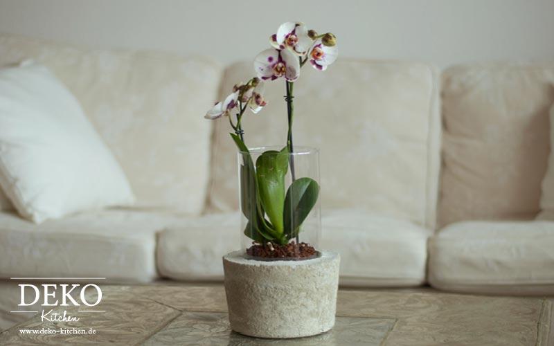 DIY: Coole Deko-Vase mit Betonsockel von Deko-Kitchen