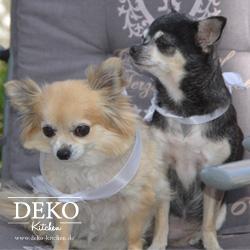 Gizmo & Idefix von Deko-Kitchen