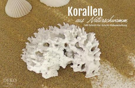 DIY: Deko-Korallen aus Naturschwamm selber machen Deko-Kitchen