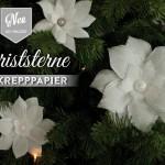 DYI: Christsterne aus Krepppapier Deko-Kitchen