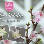 DIY: Kirschblüten aus Krepppaper von Deko-Kitchen