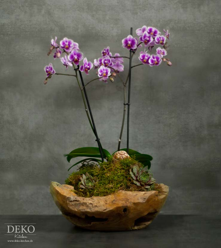 Diy orchideen effektvoll dekorieren deko kitchen for Deko kitchen papierblumen