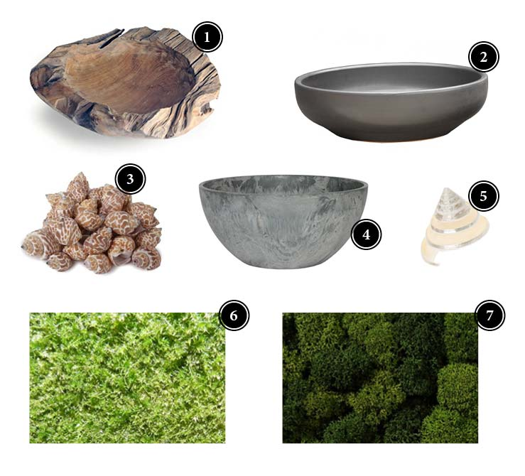 Produkte_OrchideenArrangement