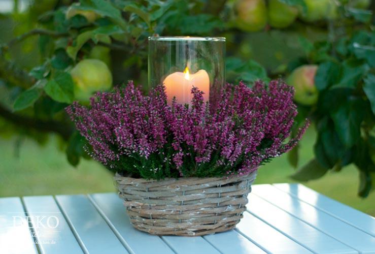 Diy h bsche herbst windlichter mit pflanzen deko kitchen for Herbstdeko 2016 draussen