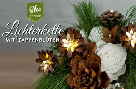 DIY: Weihnachtliche Lichterkette mit Kiefernzapfen Deko-Kitchen