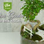 DIY: süßer Miniatur-Garten als Frühlingsdeko für den Tisch Deko-Kitchen