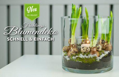 DIY: Frühlings-Blumendeko schnell & einfach