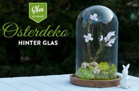 DIY: hübsche Osterdeko unter einer Glasglocke