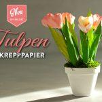 DIY: hübsche Tulpen aus Krepppapier für Eure Frühlingsdeko