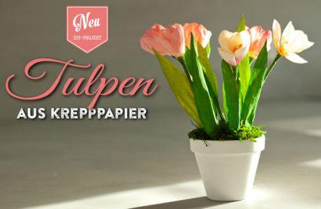 DIY: hübsche Tulpen aus Krepppapier für Eure Frühlingsdeko Deko-Kitchen