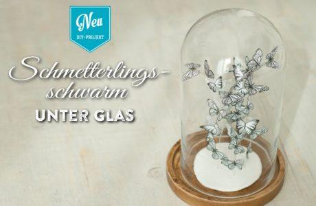DIY: süßer Schmetterlingsschwarm unter Glas