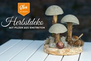 diy coole herbstdeko mit pilzen aus beton deko kitchen