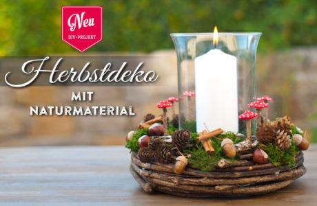 DIY: Herbstdeko mit Naturmaterial Deko-Kitchen