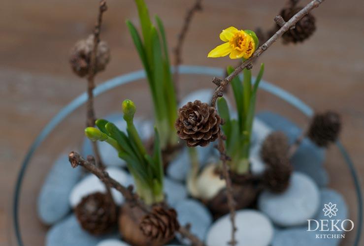 DIY: süße Frühlingsdeko mit Schmetterlingen Deko-Kitchen