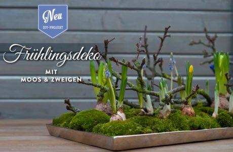 DIY: wunderschöne Osterdeko mit Moos & Zweigen Deko-Kitchen