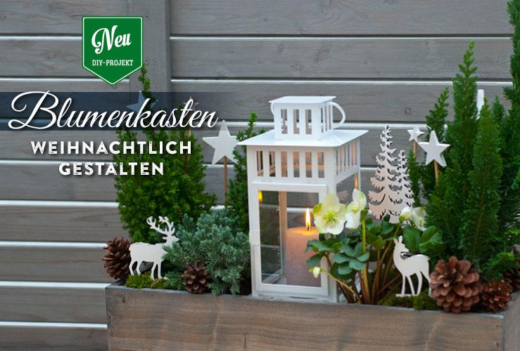 DIY: Blumenkästen wunderschön weihnachtlich gestalten