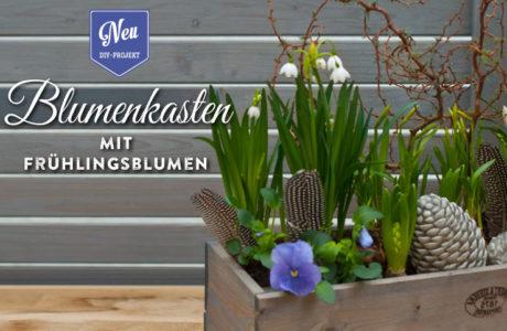Blumenkasten mit Frühlingsdeko